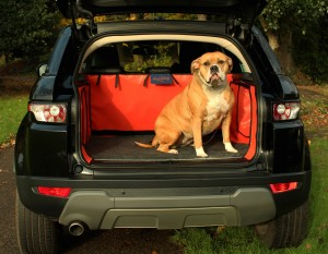 Why dog owners need a car boot liner