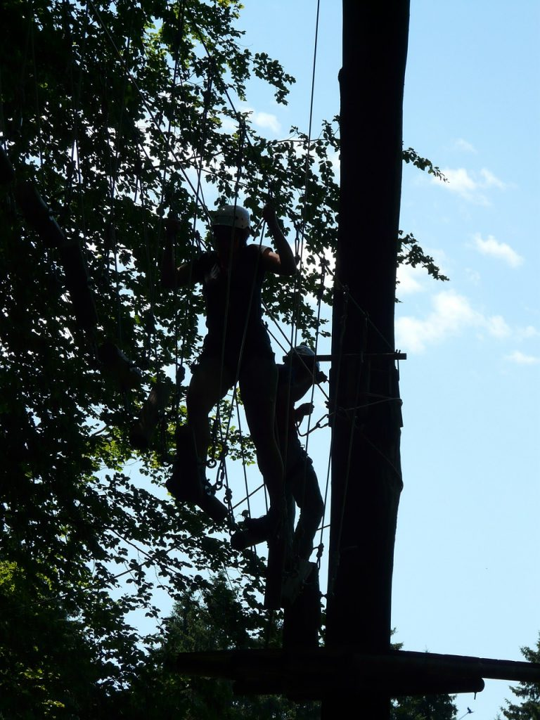 climbing in the trees at Go Ape