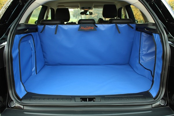 a blue boot liner